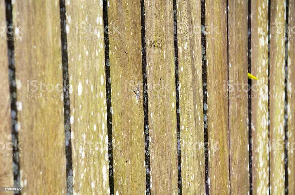 Aged Wooden Plank royalty-free stock photo