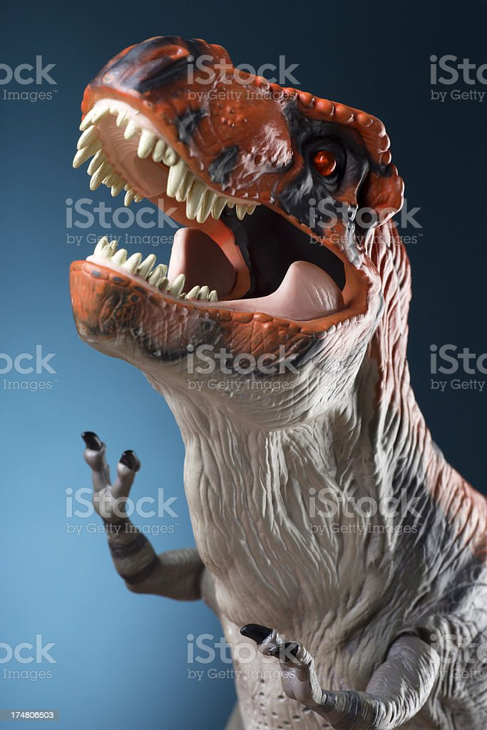 Aggressive Tyrannosaurus Rex on a Blue Background royalty-free stock photo