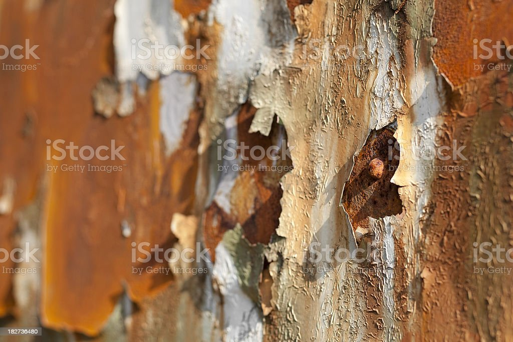 aging process royalty-free stock photo