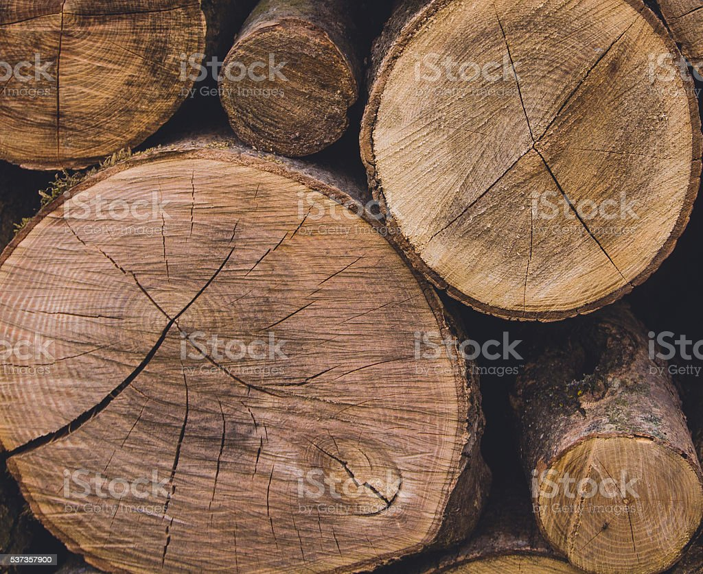 aging rings stock photo