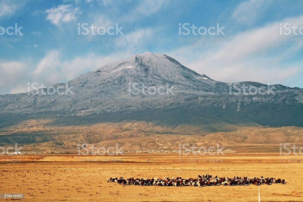 Agrı Mountain stock photo