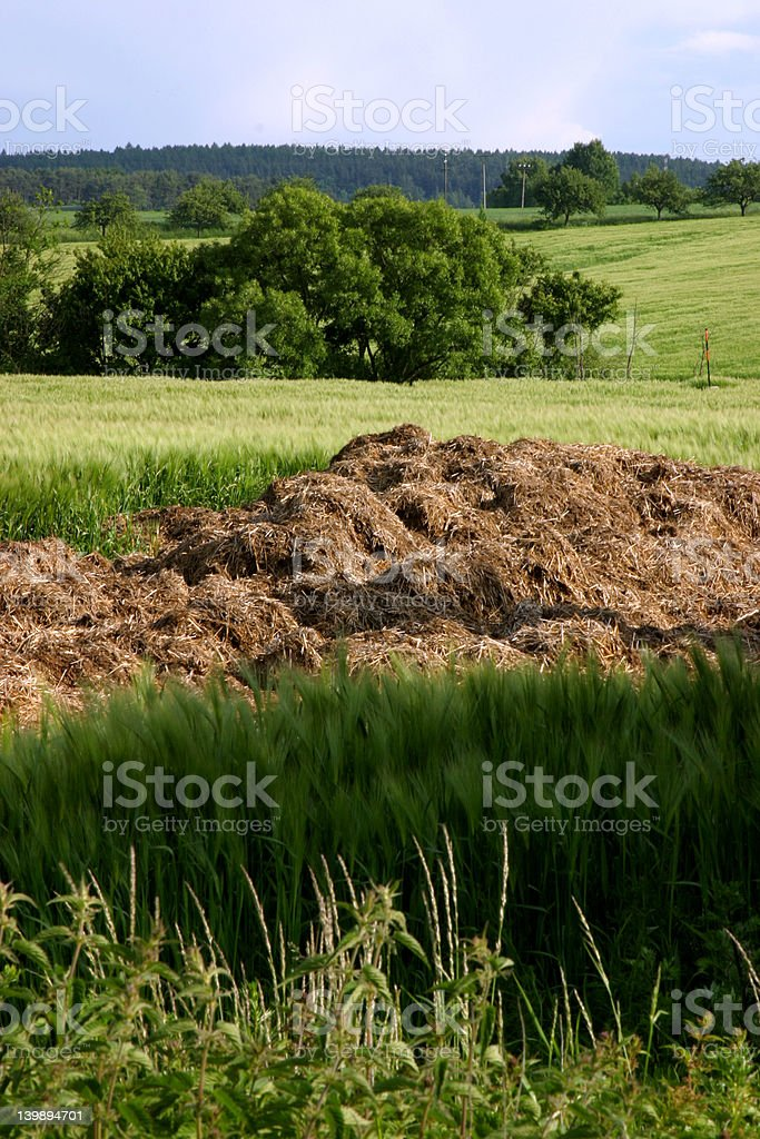 agricultural area stock photo
