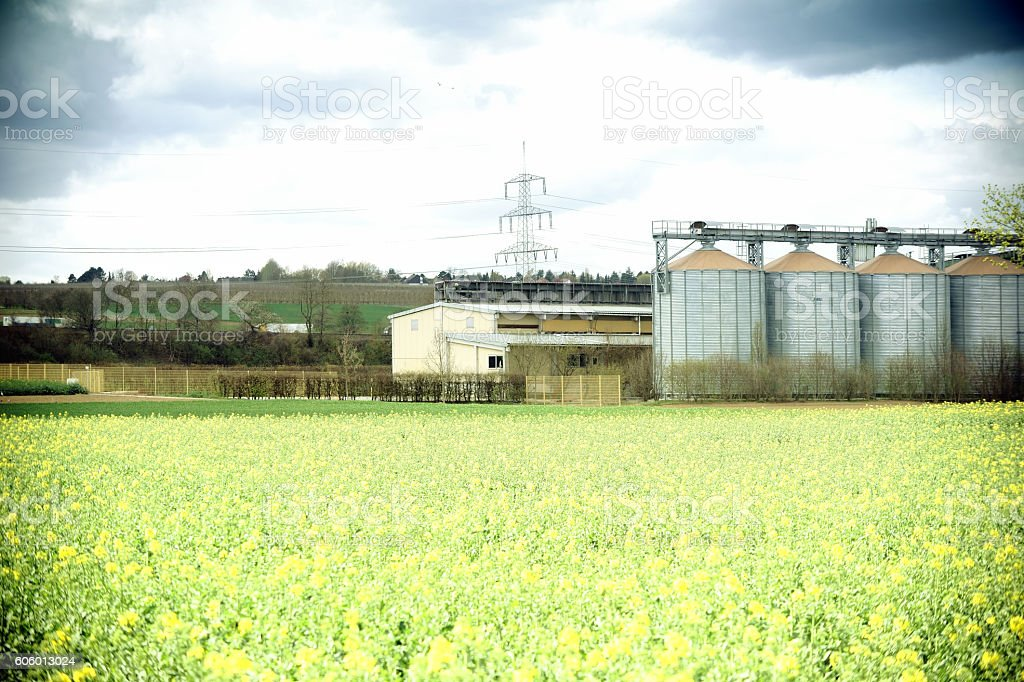 Agricultural buildings stock photo