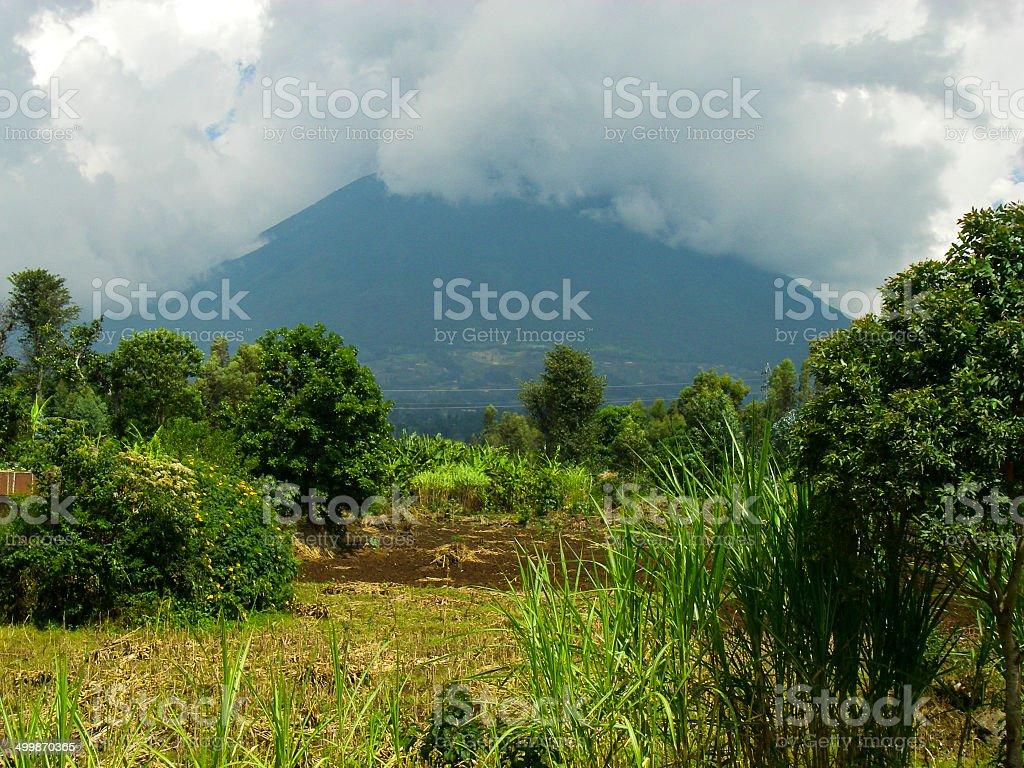 Agricultural Fields lower slopes Muhabura Volcano Musanze Rwanda stock photo
