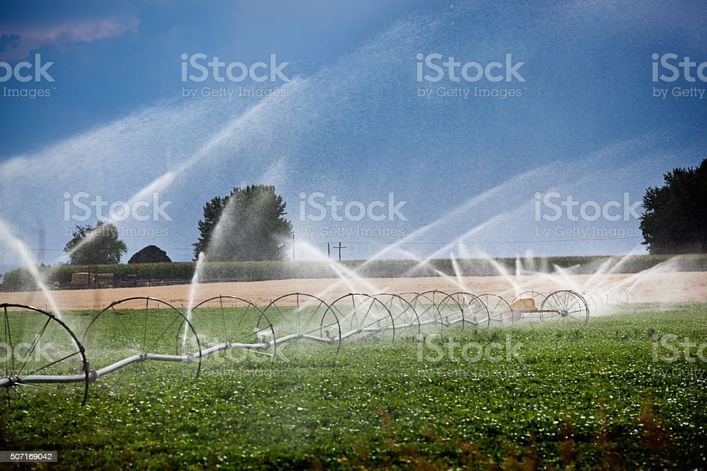 Agricultural Irrigation Equipment Watering Crop in Drought Area stock photo
