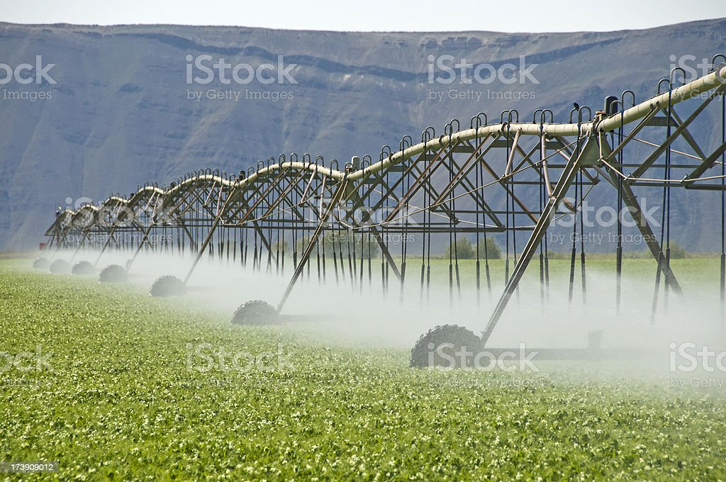 Agricultural irrigation in Columbia River Basin royalty-free stock photo