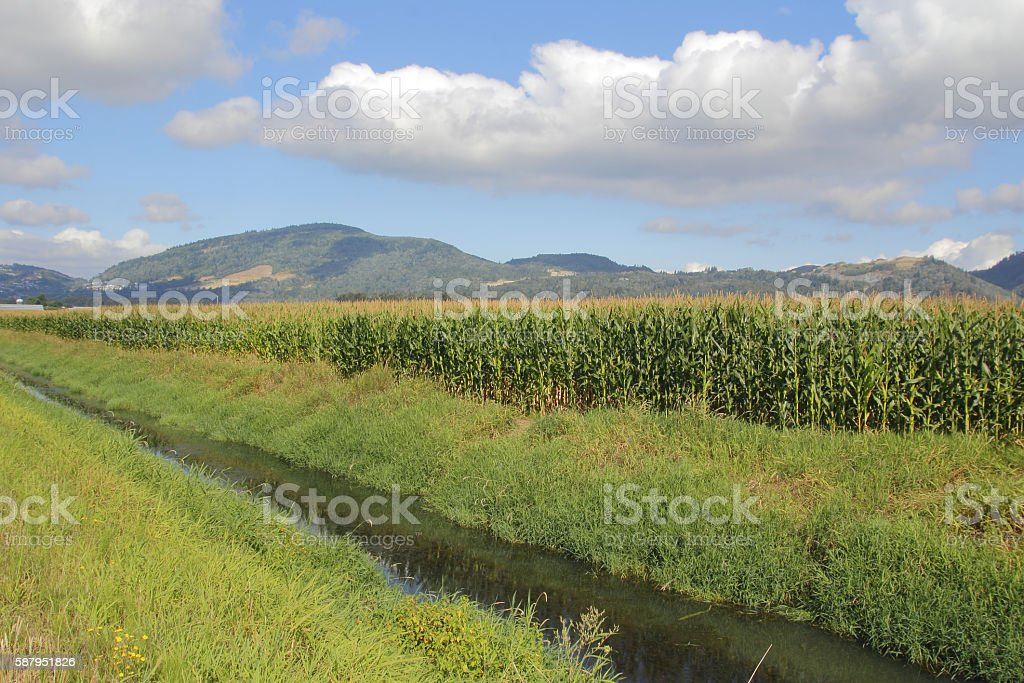 Agricultural Irrigation Resources stock photo
