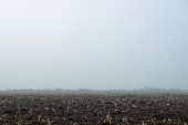 Agricultural land in morning mist. Geesteren. Achterhoek. Gelderland. The Netherlands.