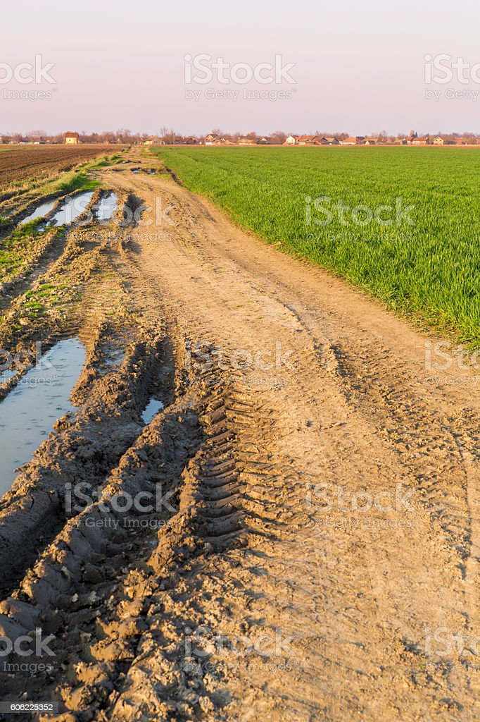Agricultural landsaple, arable crop field. stock photo