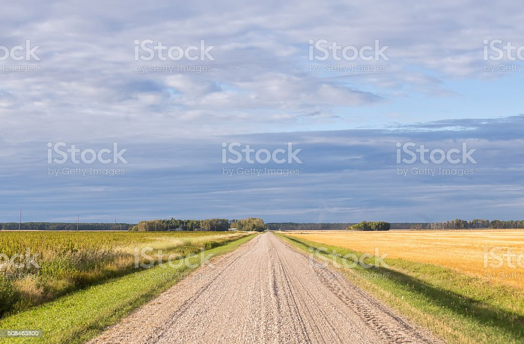 Agricultural landscape in late summer stock photo