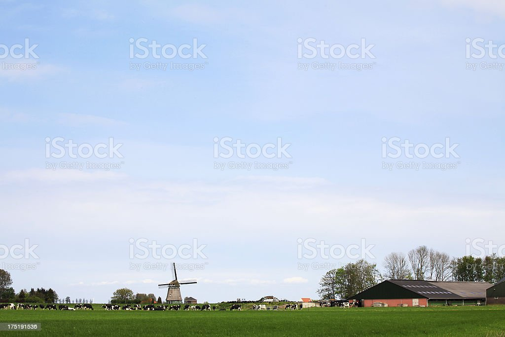 Agricultural Landscape in the Netherlands royalty-free stock photo