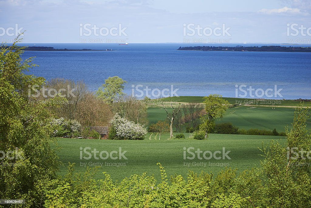 Agricultural Landscape On Funen stock photo