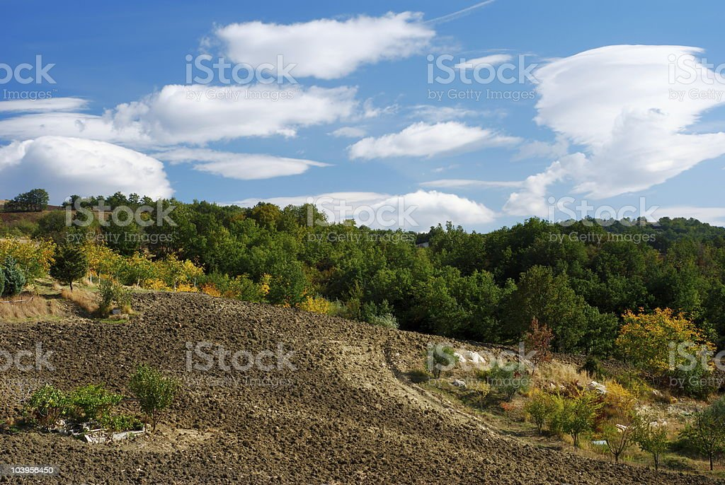 Agricultural landscape royalty-free stock photo