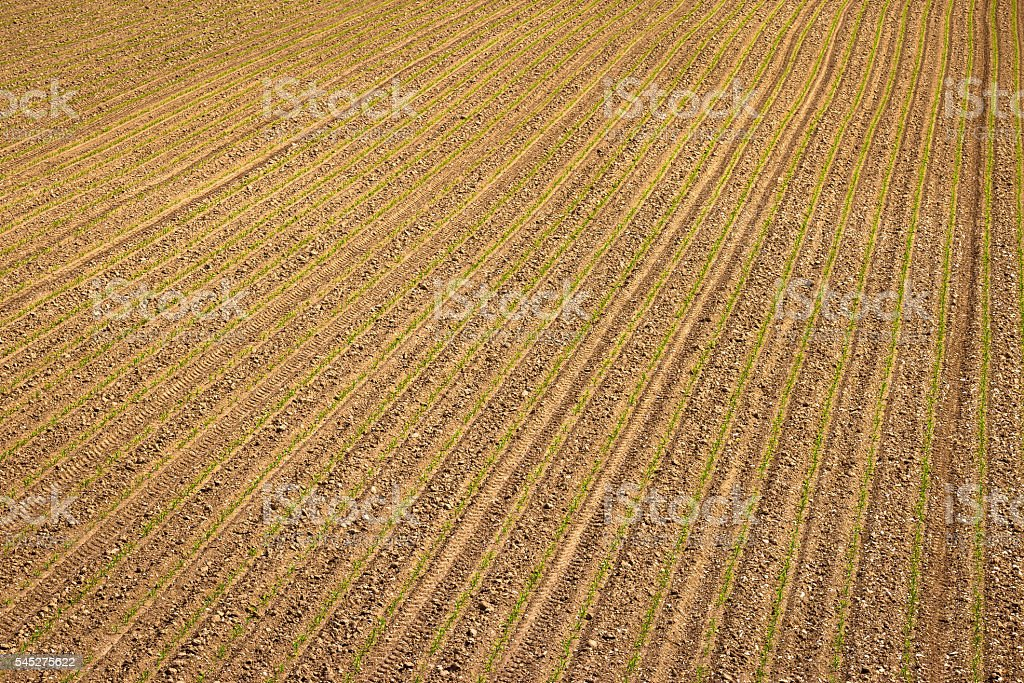 Agricultural layer view od plowed field stock photo