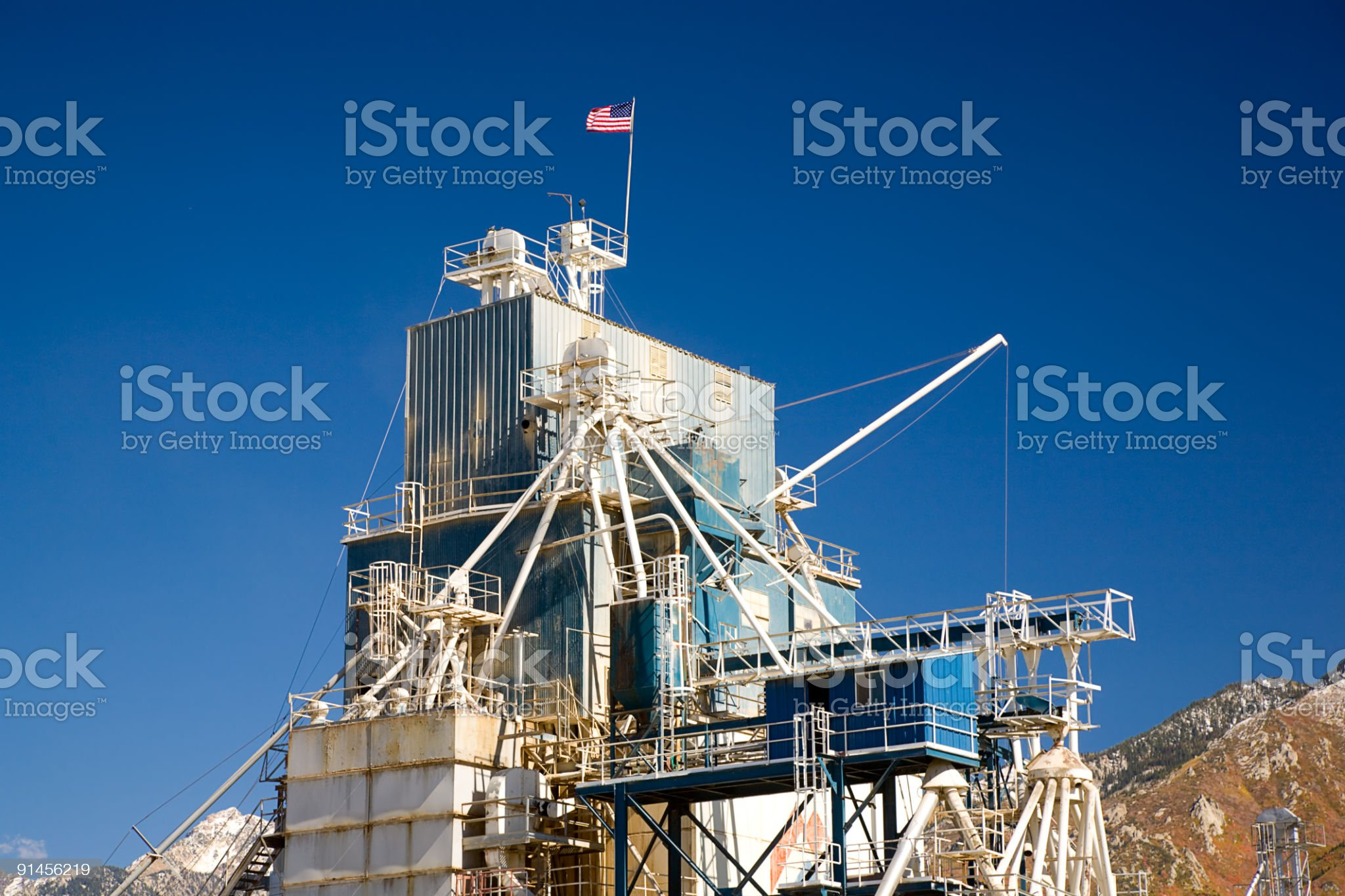 Agricultural Plant royalty-free stock photo