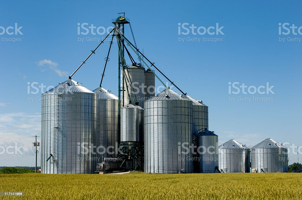 Agricultural seed or feed silos in a field. stock photo