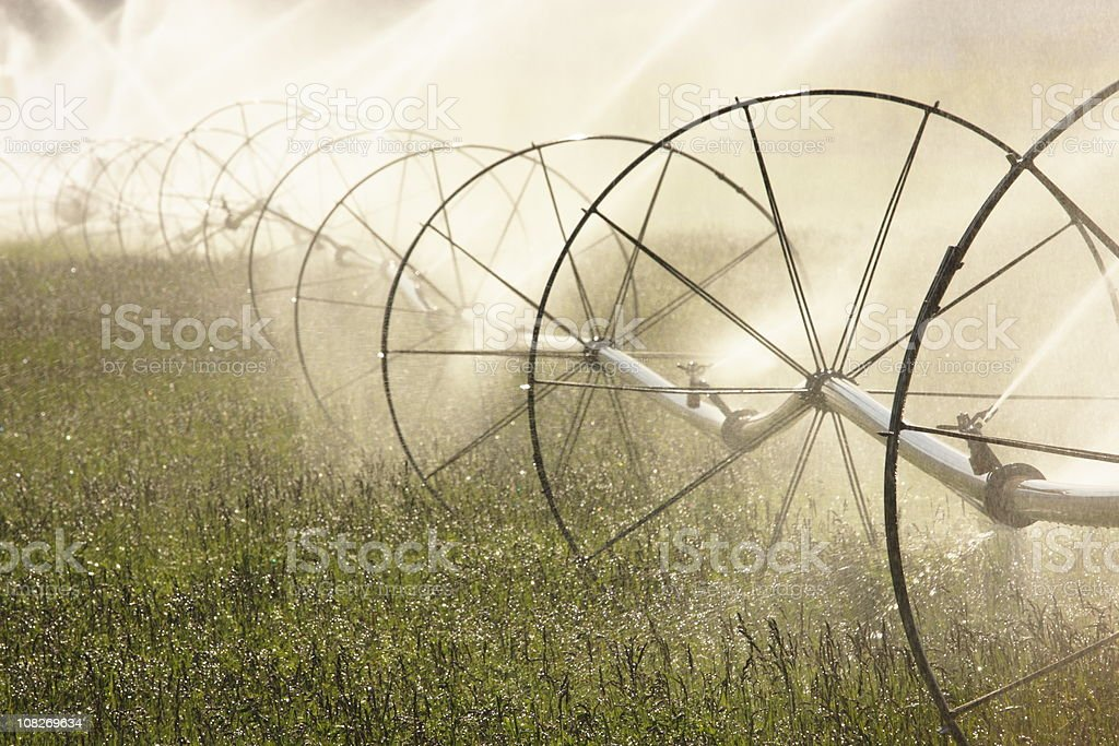 Sprinkler Irrigation Equipment Spraying Farm Field stock photo