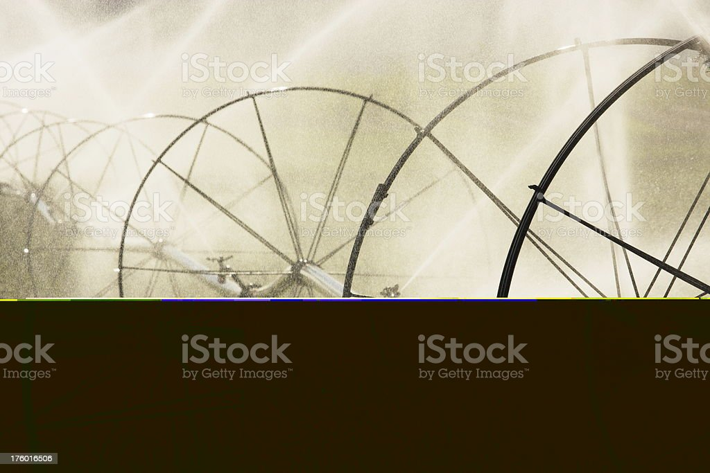 Agricultural Sprinkler Irrigation Crop Spray stock photo