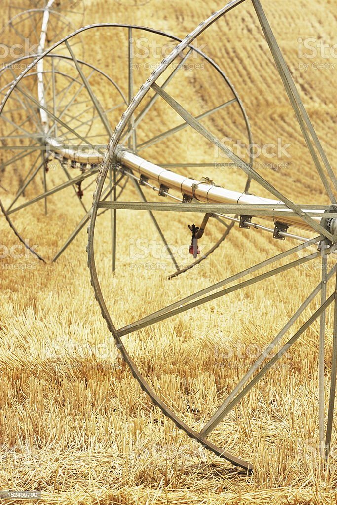 Irrigation Sprinkler Equipment Crop Field stock photo