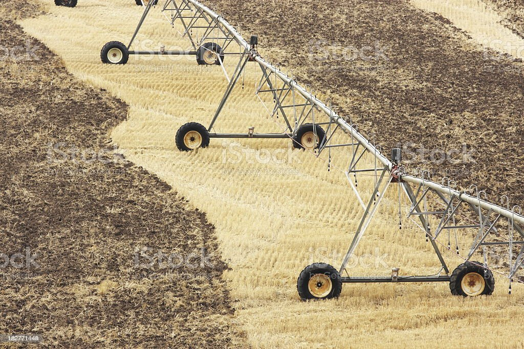 Irrigation Sprinkler Equipment Farm Crop stock photo