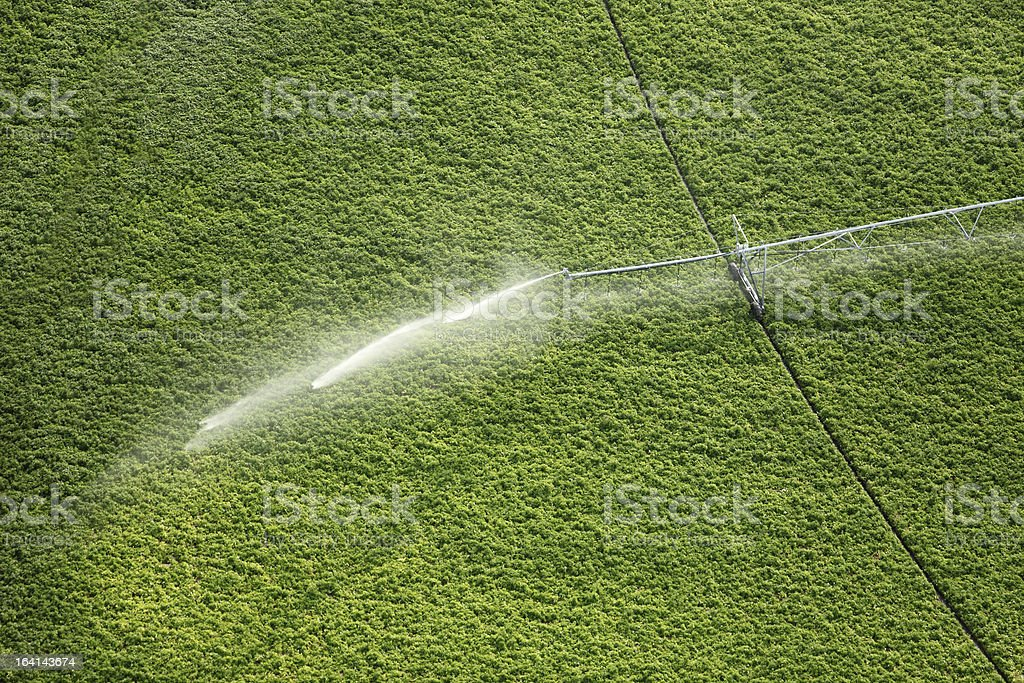 Agricultural sprinkler stock photo