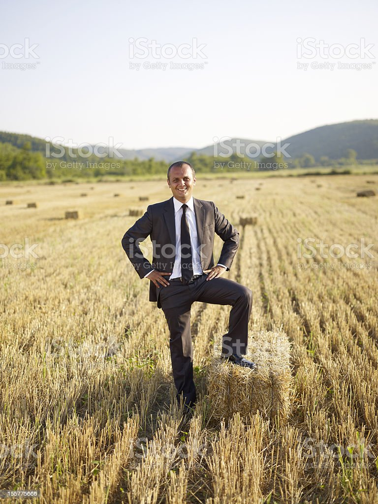 agricultural support stock photo