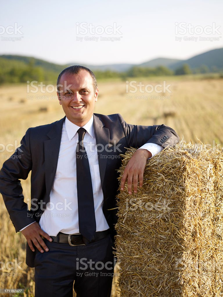 agricultural support royalty-free stock photo