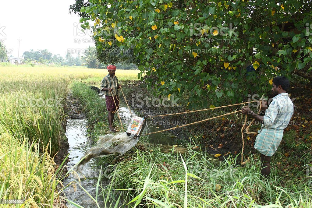 Agricultural workers stock photo