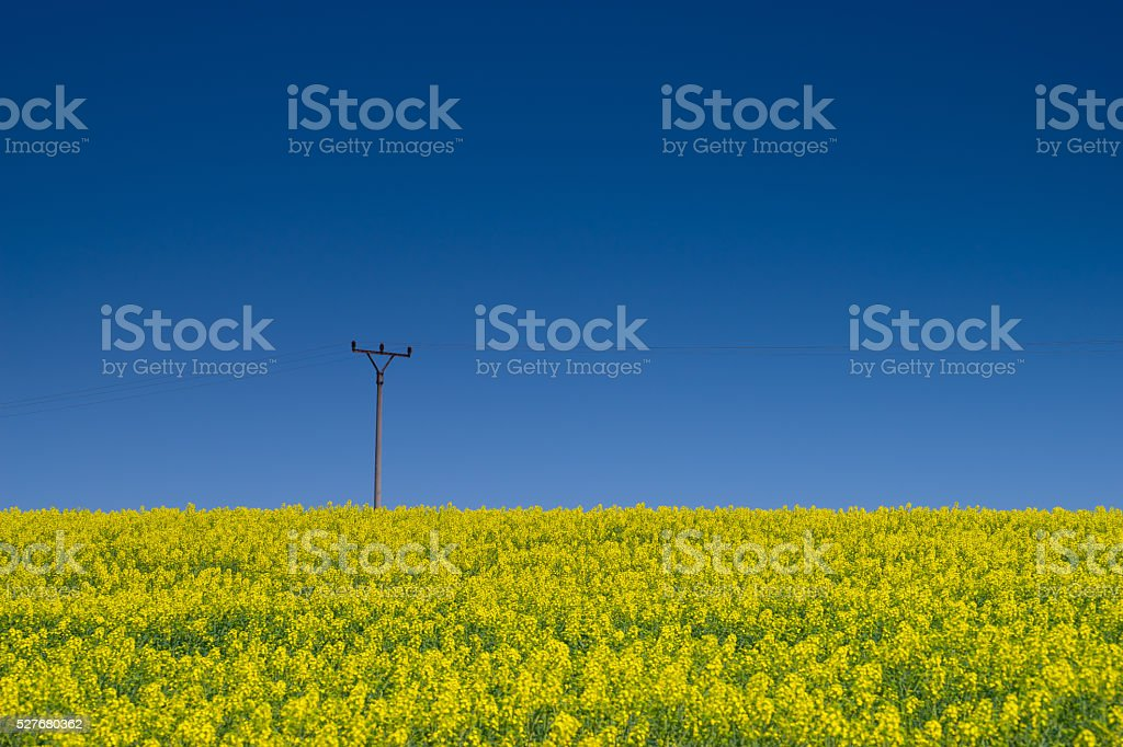 Agriculture and energy stock photo