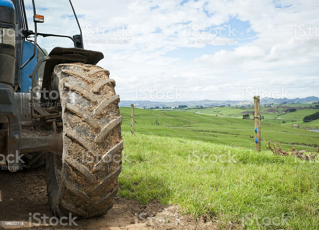 Agriculture Backdrop royalty-free stock photo