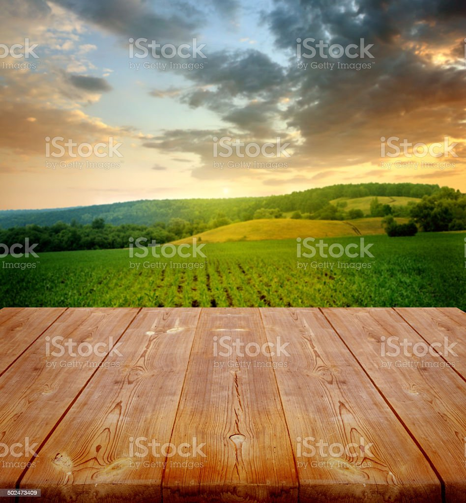 agriculture background with wooden planks stock photo