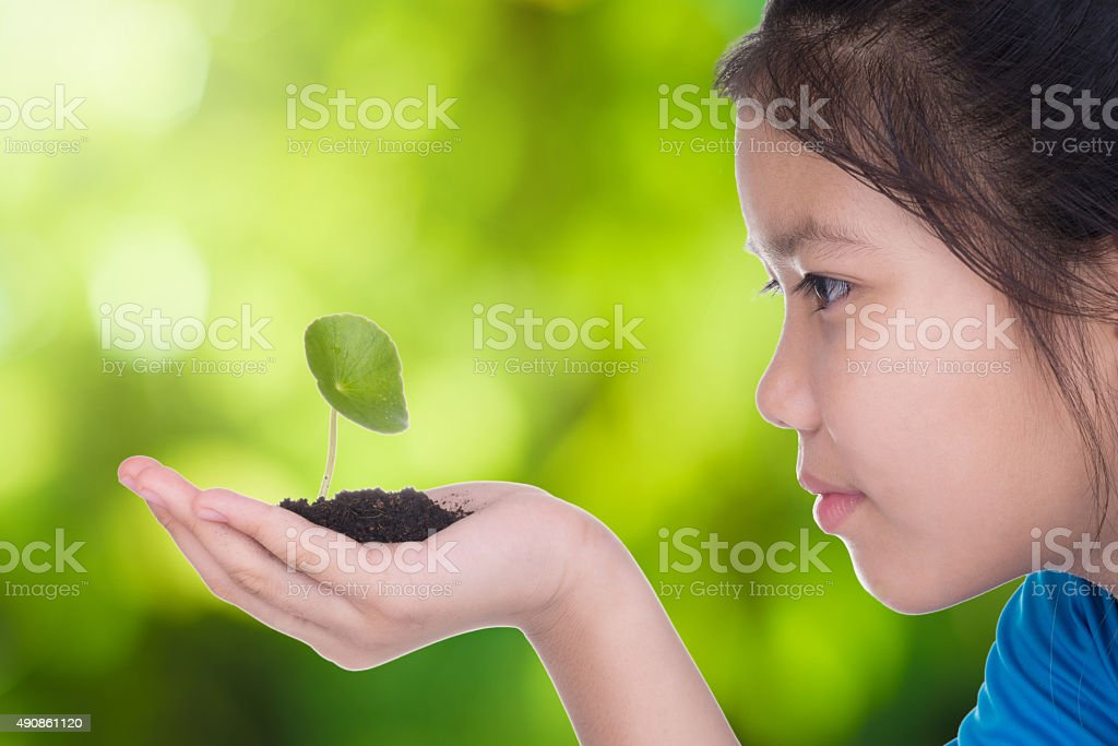 agriculture  concept stock photo
