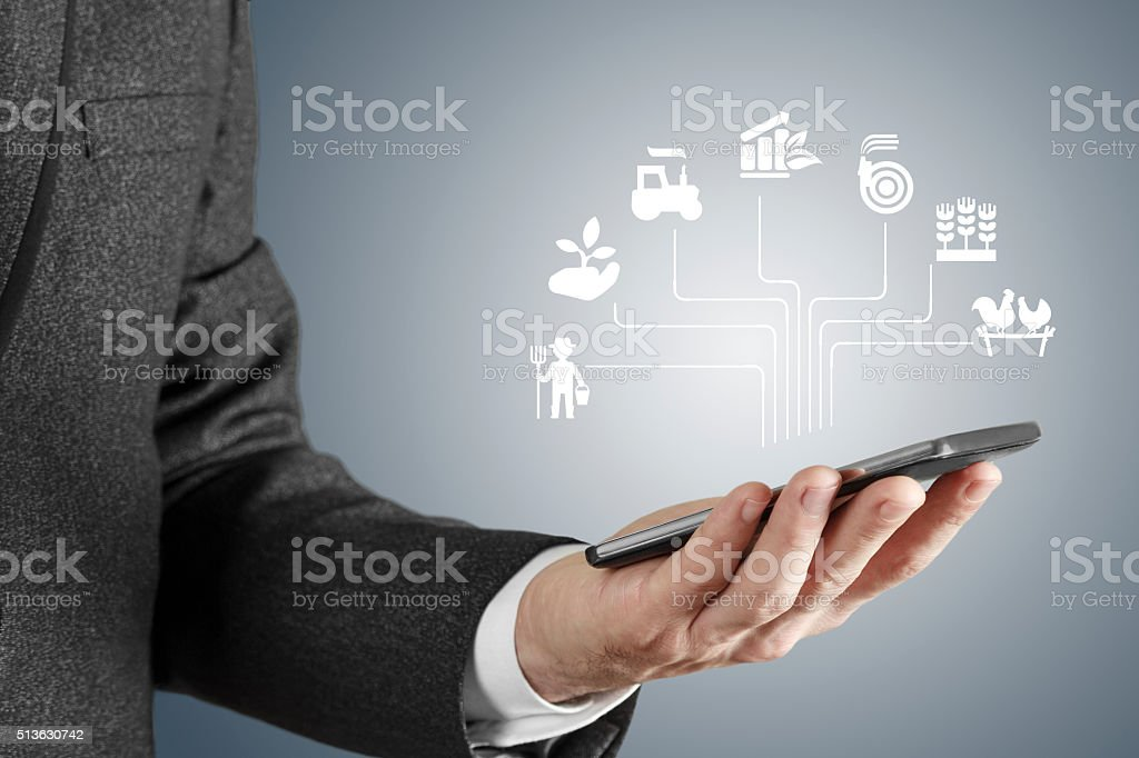 Agriculture consept stock photo