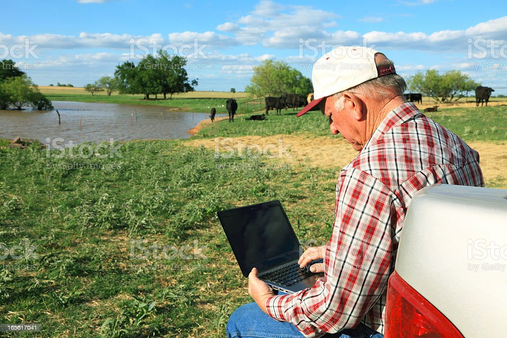 Agriculture: Farmer or rancher in field with Computer, Cattle, pond royalty-free stock photo
