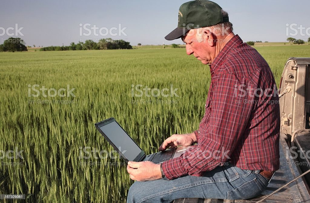 Agriculture: Farmer or rancher with Computer in a Wheat Field royalty-free stock photo