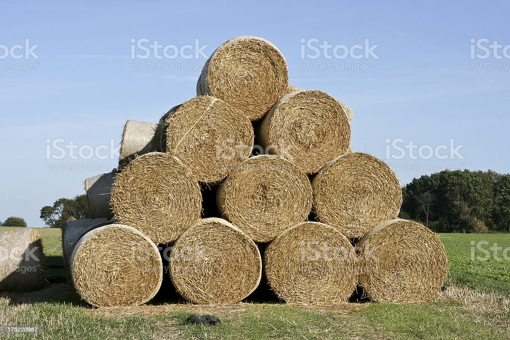 Agriculture Haystacks in Wallonia Belgium royalty-free stock photo