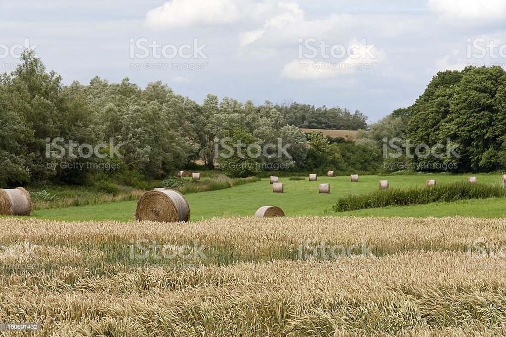 Agriculture in Mecklenburg, Germany royalty-free stock photo
