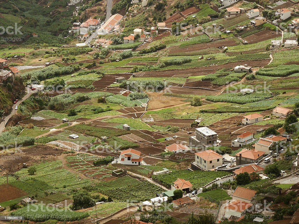 Agriculture on Madeira island (Portugal) stock photo