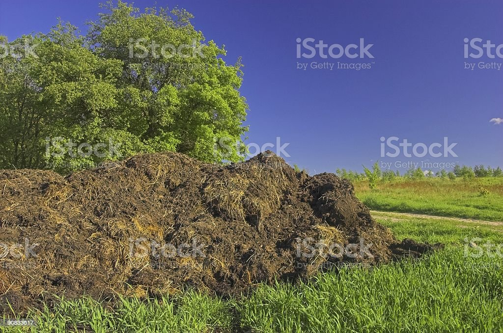 Agriculture royalty-free stock photo