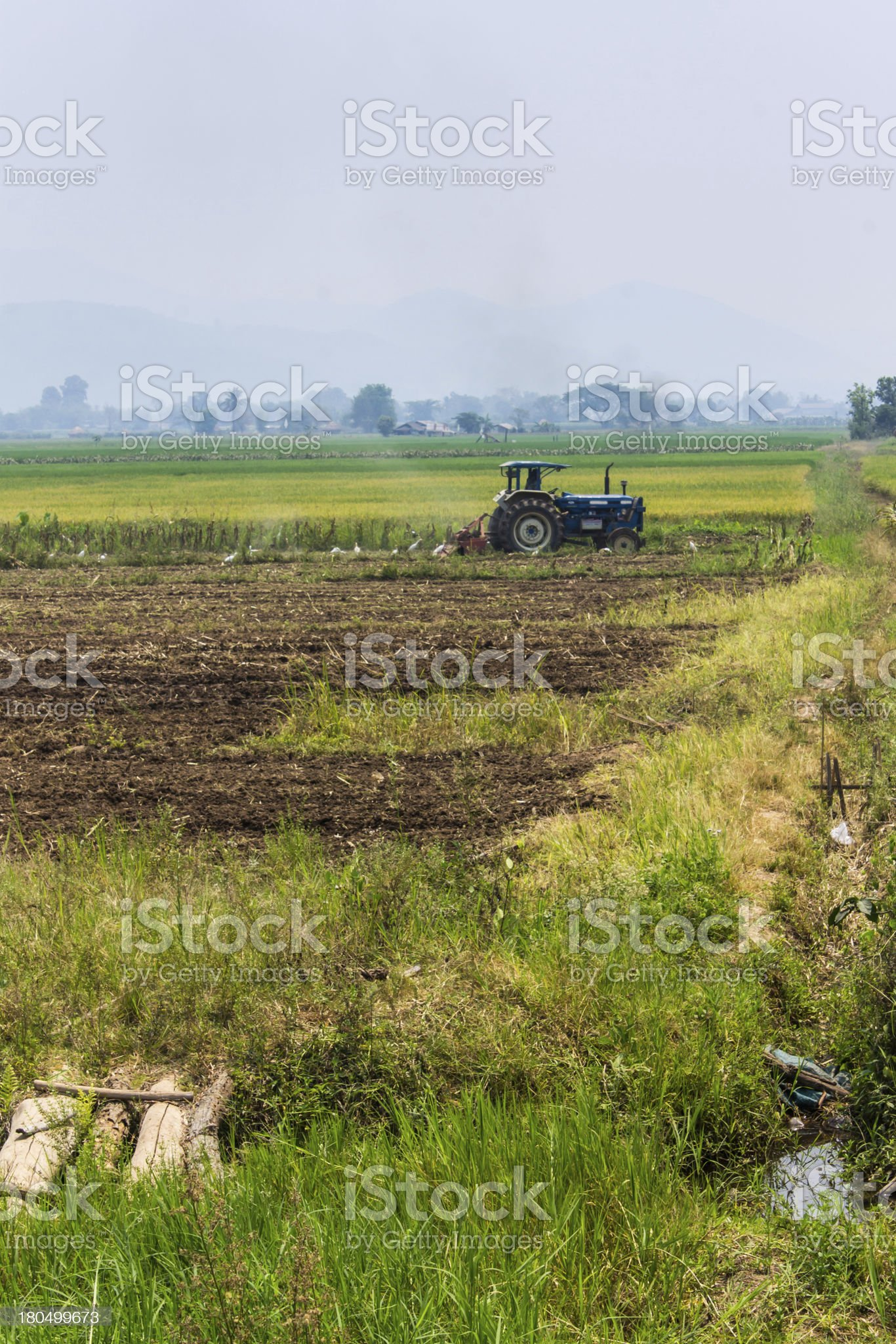 Agriculture plowing tractor on wheat cereal fields royalty-free stock photo