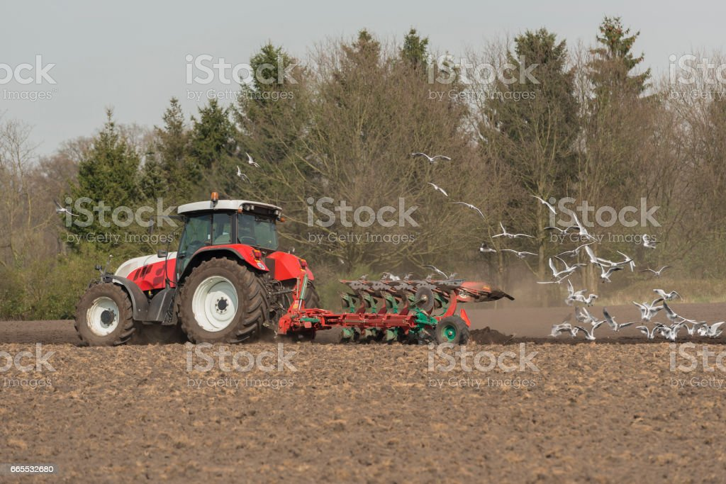 Agriculture red white tractor with plow stock photo