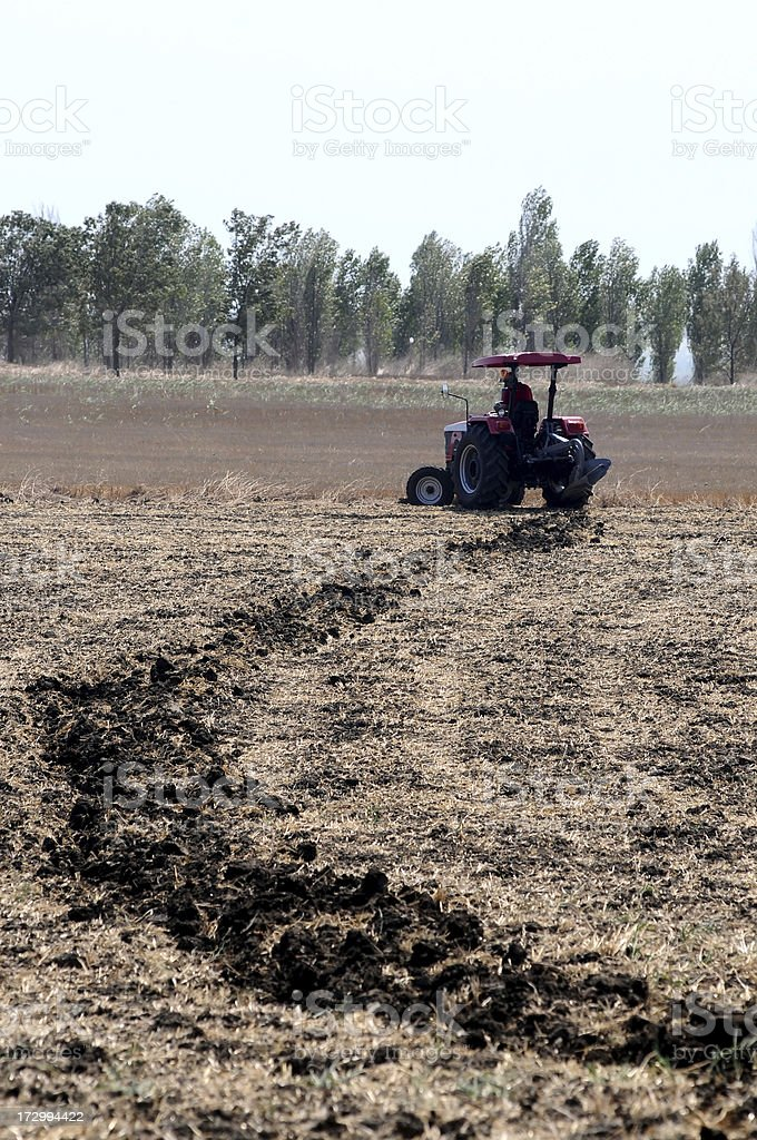agriculture series royalty-free stock photo