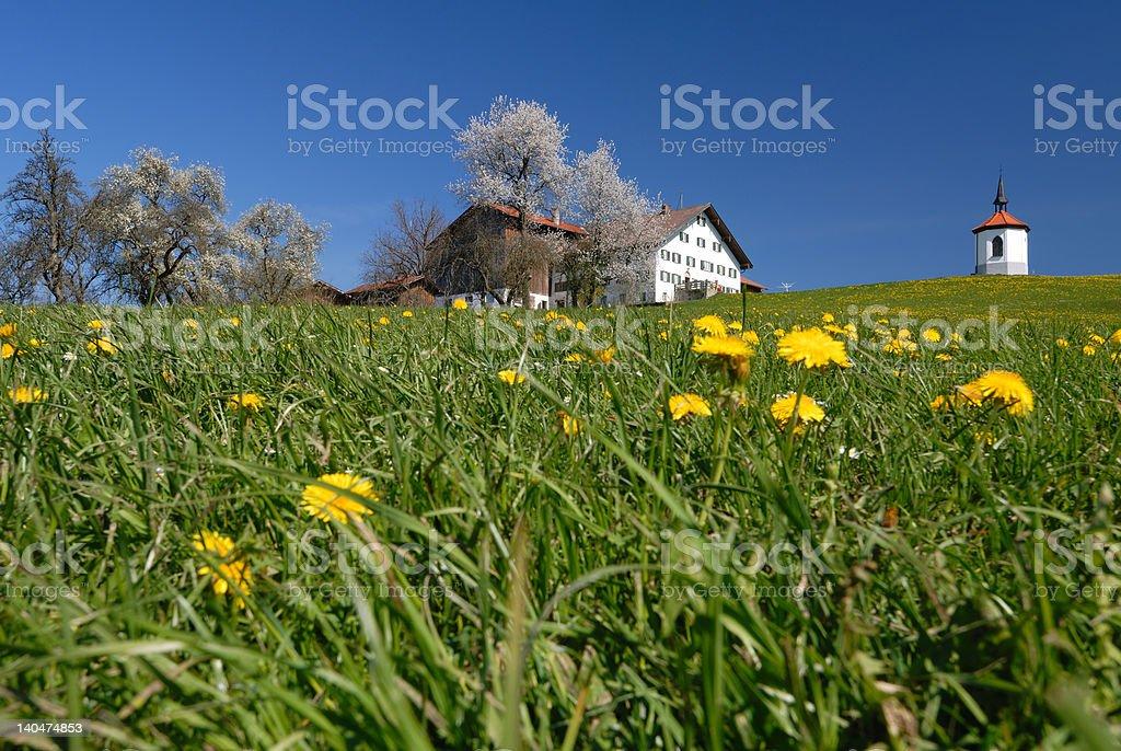 agrotourism stock photo