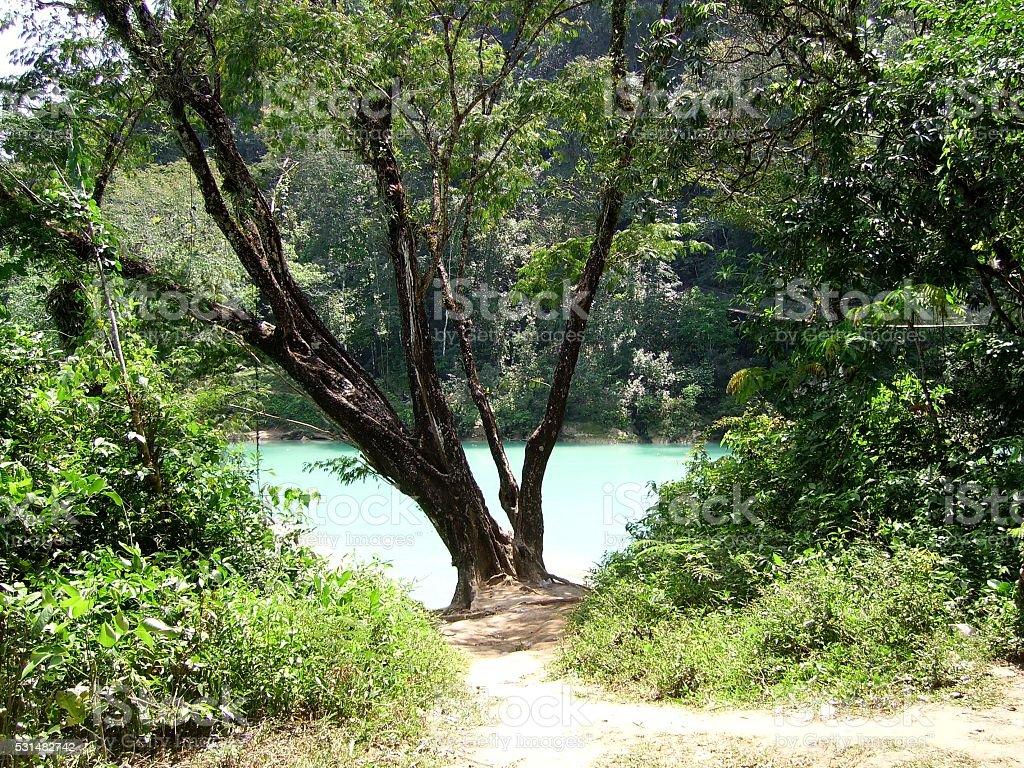 Agua Clara, Chiapas, Mexico stock photo