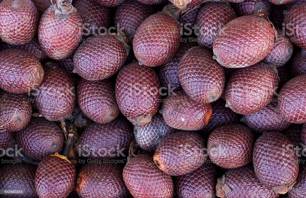 Aguaje, Moriche, palm fruit, buriti nuts, mauritia flexuosa, Maurity palm. stock photo