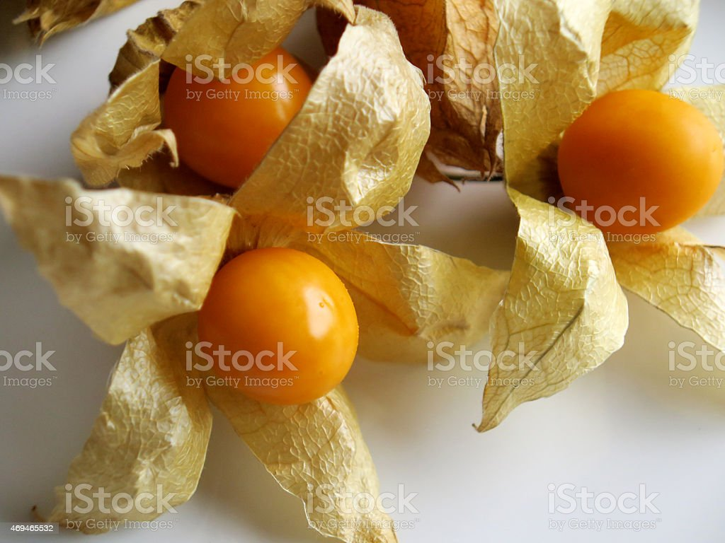 Aguaymanto, Peruvian fruit stock photo