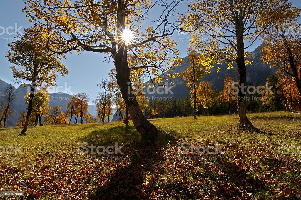 ahornboden royalty-free stock photo