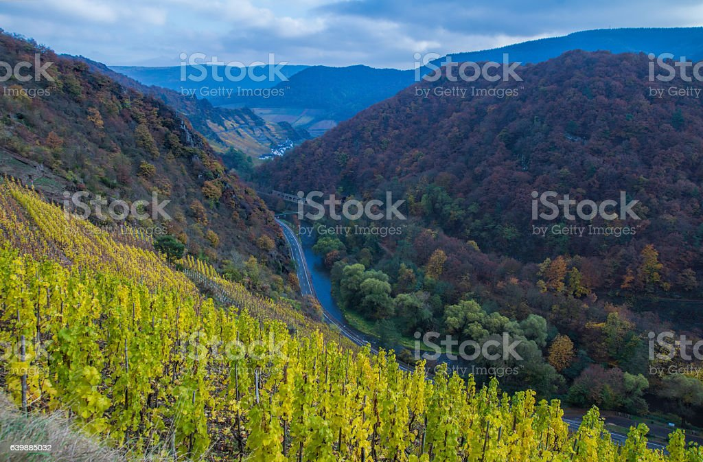 Ahrvalley stock photo