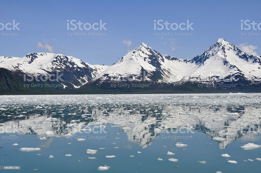 Aialik bay, Kenai Fjords National Park, (Alaska) stock photo