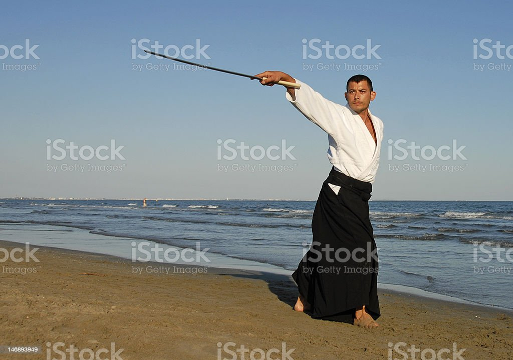 aikido royalty-free stock photo